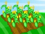 لعبة مزرعة المرح