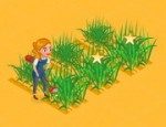 مزرعة القمح