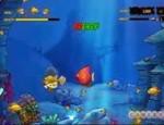 لعبة السمكة في البحر